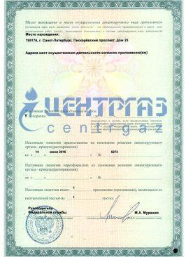 Лицензия на мед оборудование_2